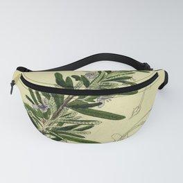 Botanical Rosemary Fanny Pack