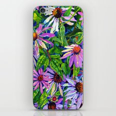 Echinacea iPhone & iPod Skin