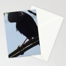 Crow in Tree - Lowered Head Stationery Cards