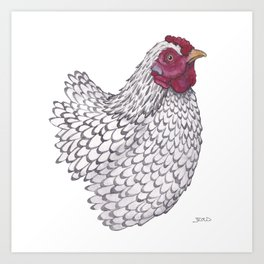 Wyandotte Chicken Art Print