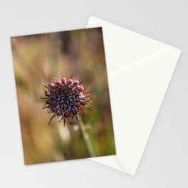 dix. Stationery Cards