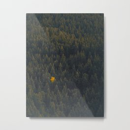 Modern Landscape Photography Single Autumn Tree Pine tree Forest Green Trees Yellow Focal Point Metal Print