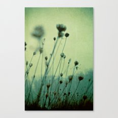 Finding Peace Within Canvas Print