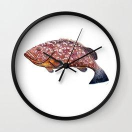 Dusky grouper or merou Wall Clock