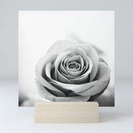 Black and White Rose Flower Photography, Grey Roses Floral Photo, Gray Neutral Nature Botanical Mini Art Print