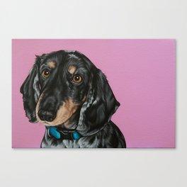Sweet Double Dapple Dachshund Portrait, Weiner Dog Painting, Dachshund Painting Canvas Print