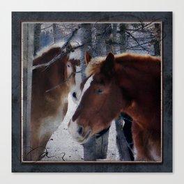 Mackinaw Island Horses Canvas Print