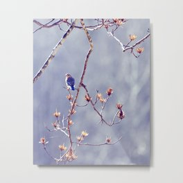 A Bluebird for Isabelle Metal Print