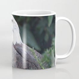 National Aviary - Pittsburgh - Bald Eagle 3 Coffee Mug