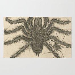 Tarantula Vintage Illustration Rug