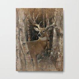 Deer - Birchwood Buck Metal Print