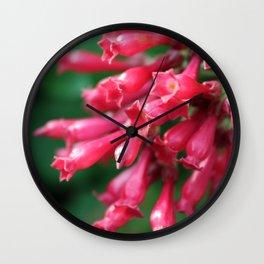 Fuchsia Wall Clock