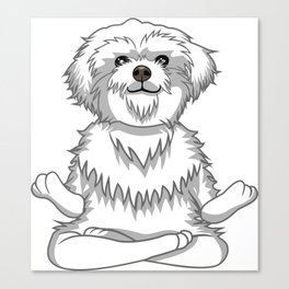 Paws and Meditate Canvas Print