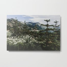 Mount Rainier Summer Wildflowers Metal Print