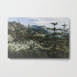 Mount Rainier Summer Wildflowers Metal Print