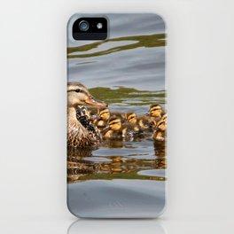 Mallard duck and ducklings iPhone Case