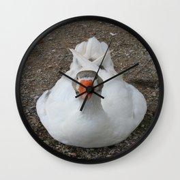 White Wild Duck Sitting on Gravel Wall Clock