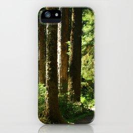 Walkway in Hoh Rainforest iPhone Case