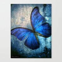 butterfly Canvas Prints featuring butterfly  by mark ashkenazi