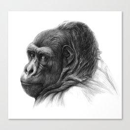 Gorilla G038b schukina Canvas Print