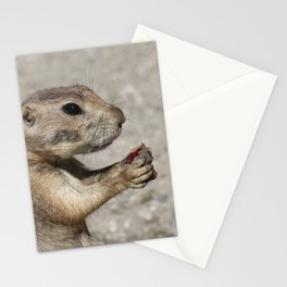 Prairiedog20170401_by_JAMFoto Stationery Cards