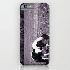 Animal :: Roadside Horse iPhone 6s Slim Case