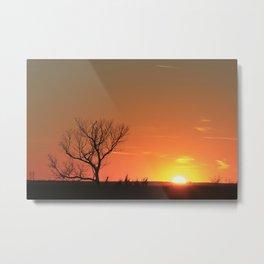 Kansas Golden Sunset with a tree Silhouette. Metal Print