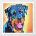 Rottweiler dog. by marlenewatson