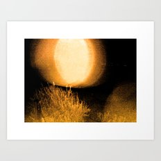 Dark Night Amber Art Print