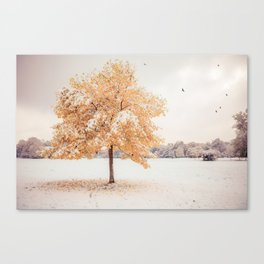 still dressed in fall Canvas Print