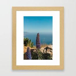 Big Sur Blooms Framed Art Print