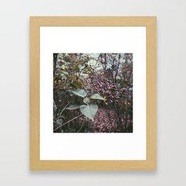 Spring Scene 3 Framed Art Print