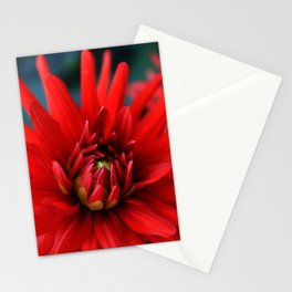 Fire red dahlia Stationery Cards