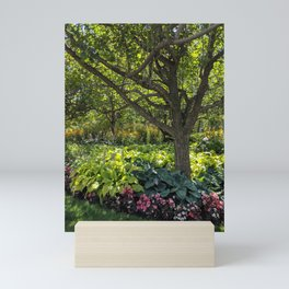 Trees and Greenery in the Park Mini Art Print