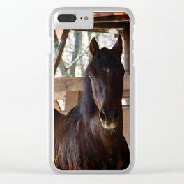 Fire Horse Clear iPhone Case