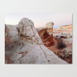 White Pocket Towers Canvas Print