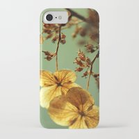 dolly parton iPhone & iPod Cases featuring Dolly by Amanda Stevens