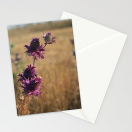 Fall Flowers Stationery Cards