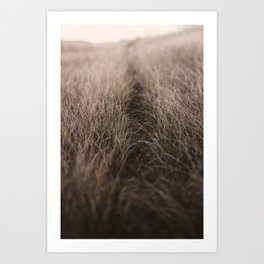 The Path of the Heart Art Print