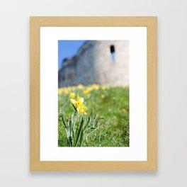Cliffords Tower Daffodils Framed Art Print