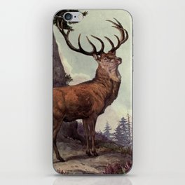 Vintage Red Deer Painting (1909) iPhone Skin