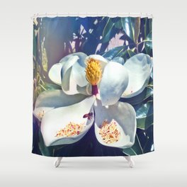 Magnolia Blossom and Bee Shower Curtain