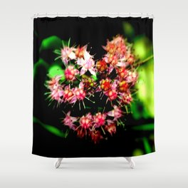 Cacti (Cactaceae) Shower Curtain