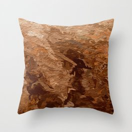 ANCIENT EGYPTIAN Throw Pillow