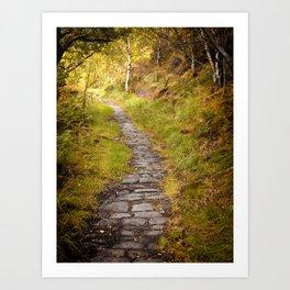 dark autumn forest pathway Art Print