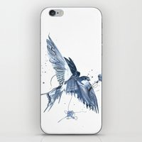 swallow iPhone & iPod Skins featuring Swallow by bethbile