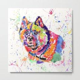 Akita in a spectrum of colour Metal Print
