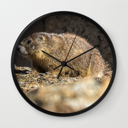 Two Marmots At Smith Rock Wall Clock