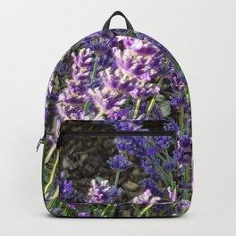 Bumblebee 10 on lavender ahem honey bee actually Backpack
