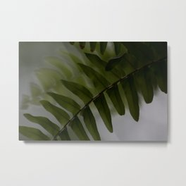 Upside down leaves Metal Print